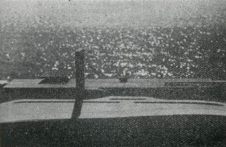 Oscar Niemeyer. Modulo. 39 1965, 29